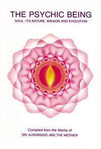 sri aurobindo teachings