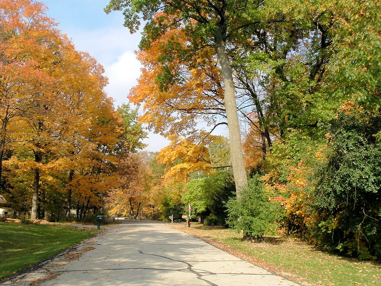 Patzke Lane in Fall